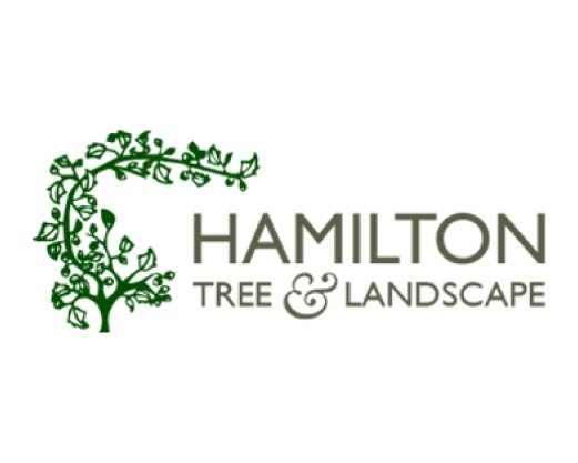 Hamilton Tree and Landscape